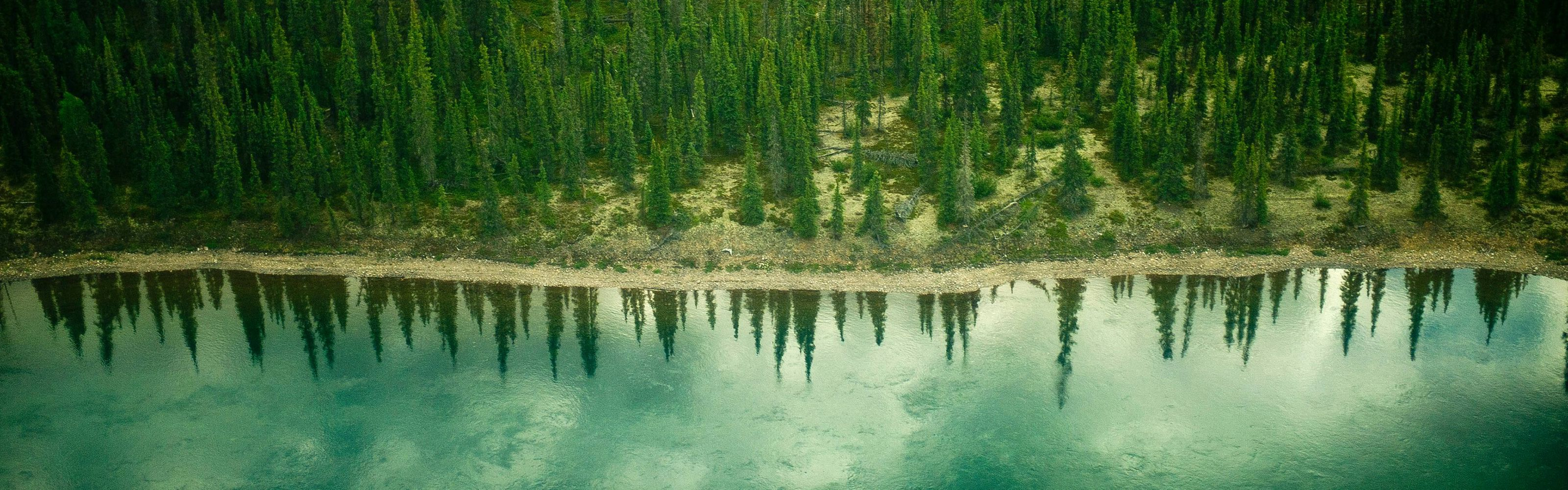 Aerial view of the Thelon River and forest landscape of Canada's far northern Thelon Game Sanctuary.