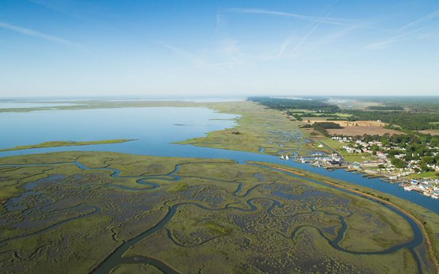 An aerial view of the Virginia Coast Reserve