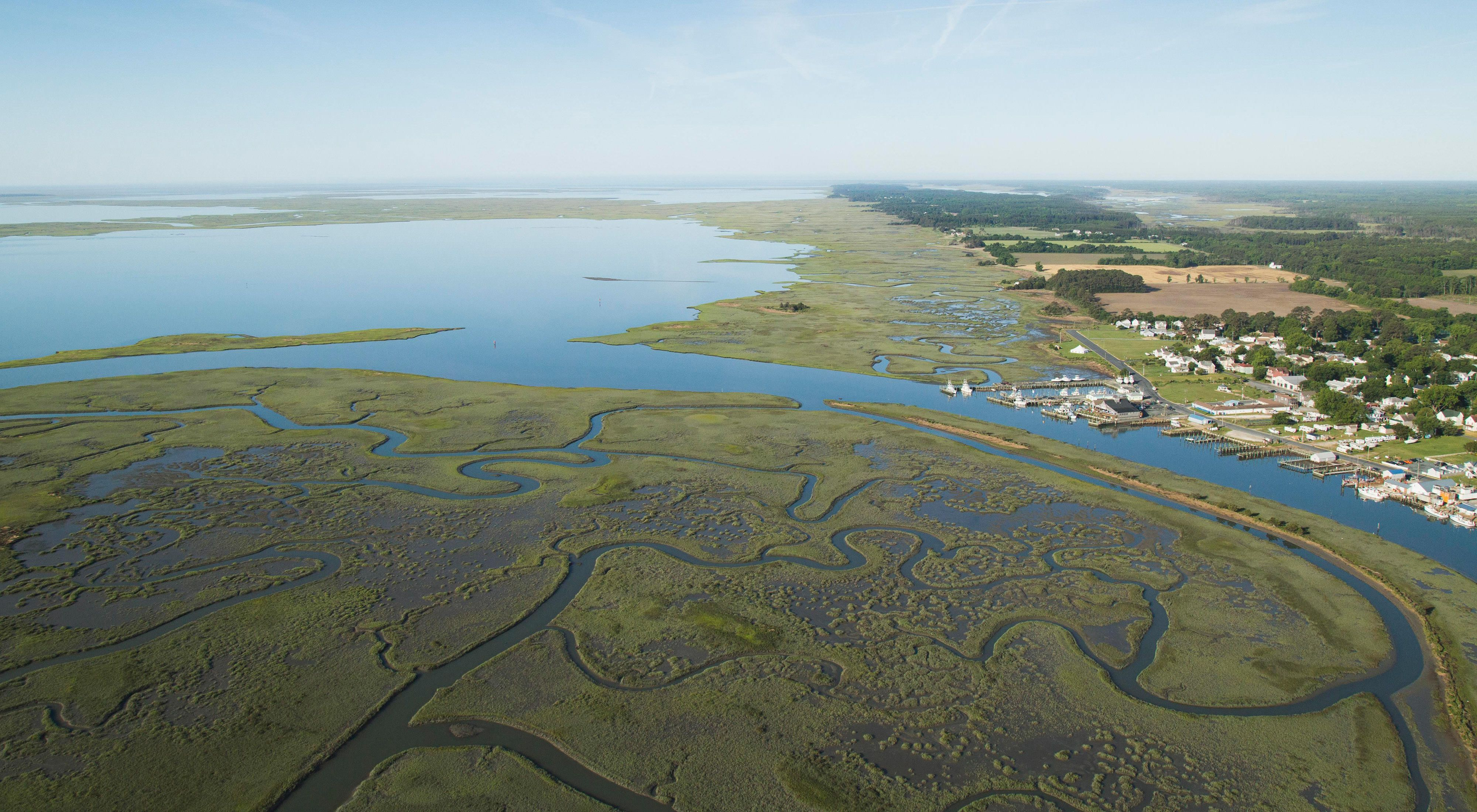 Aerial view of Watchapreague, VA. Meandering channels through coastal marsh, leading to a wider body of water, and a small coastal town with piers and buildings.
