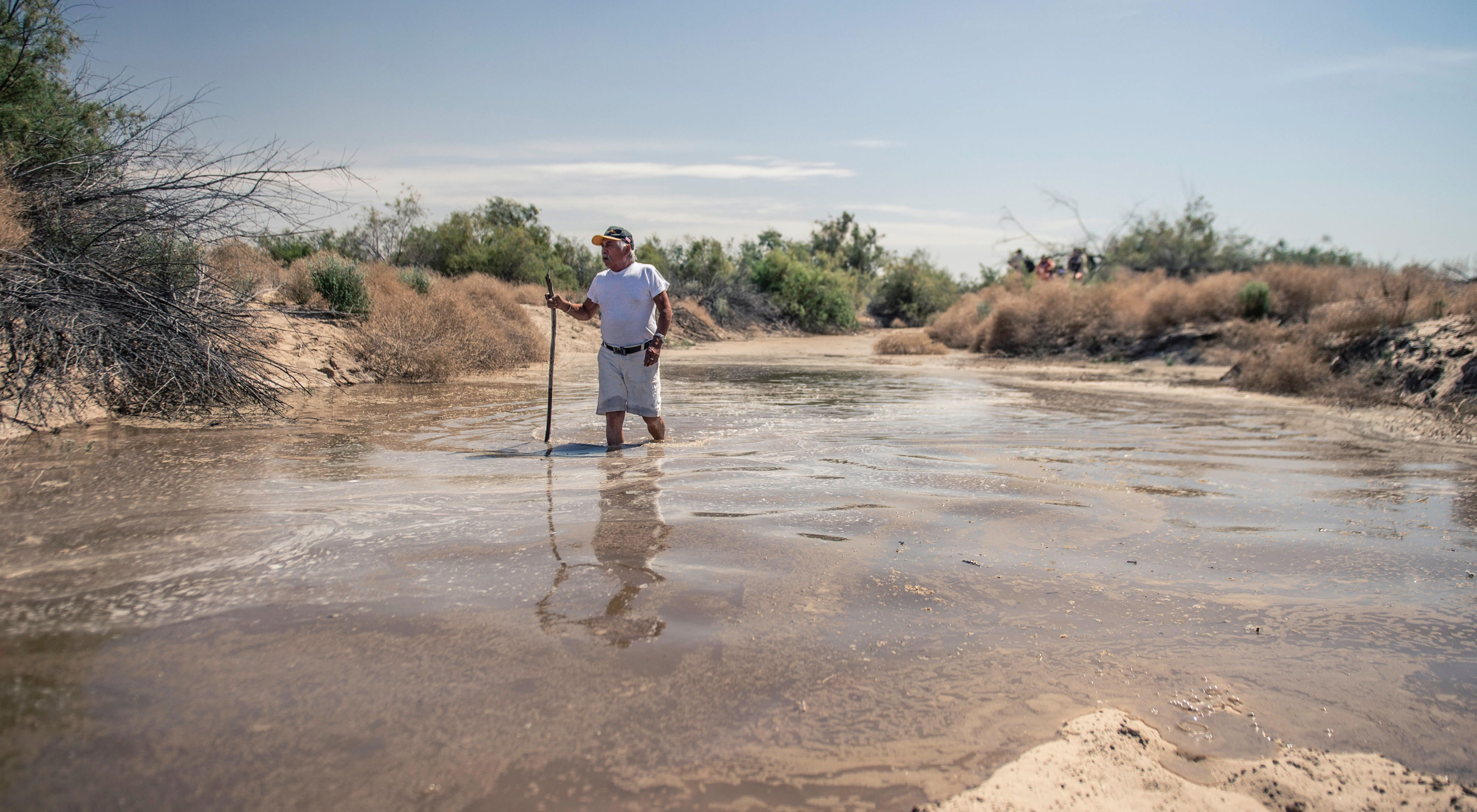 A release of water from the Morelos Dam temporarily revived the Colorado River in northern Mexico in spring 2014, encouraging the regrowth of native trees and inspiring locals to get their feet wet.