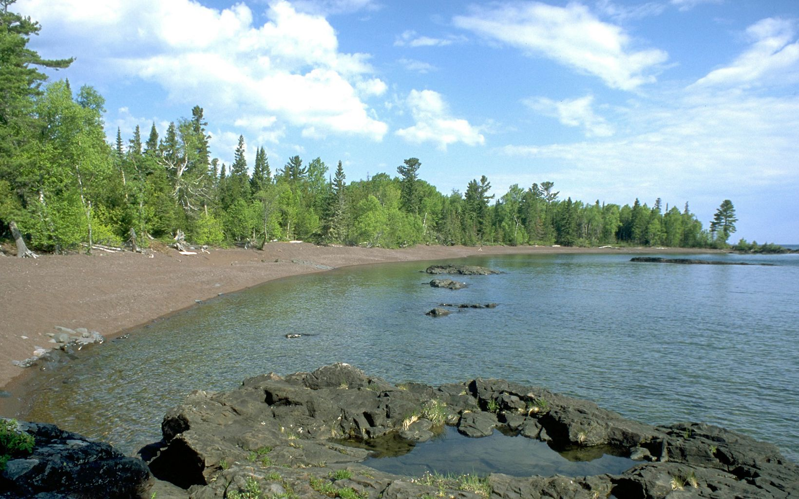 Pine trees on the brown gravel shoreline of the blue-green waters at Horseshoe Harbor.