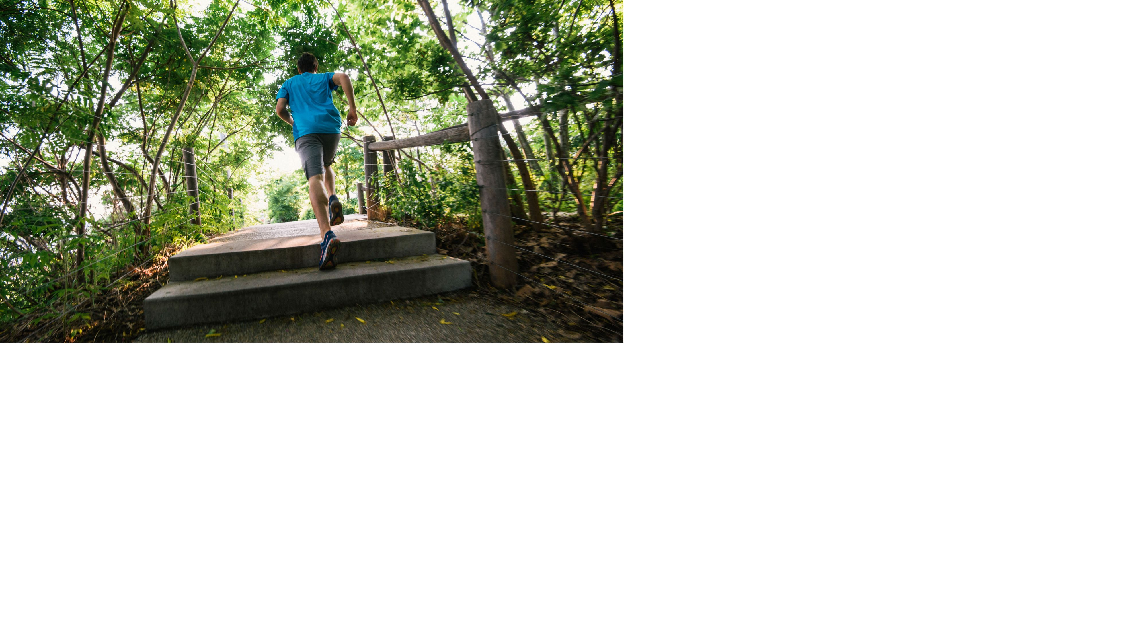 Runner in a blue shirt dashes over steps on a trail in