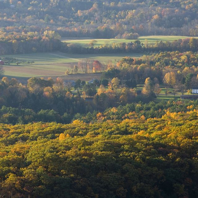 Autumn forests surround farmland spotted with barns and