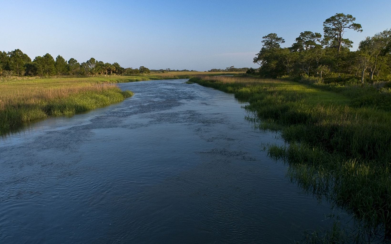 Salt marsh and hammock along Mosquito Creek border on Little St. Simons Island, a 10,000-acre barrier island bordering the Altamaha River Sound in coastal Georgia.