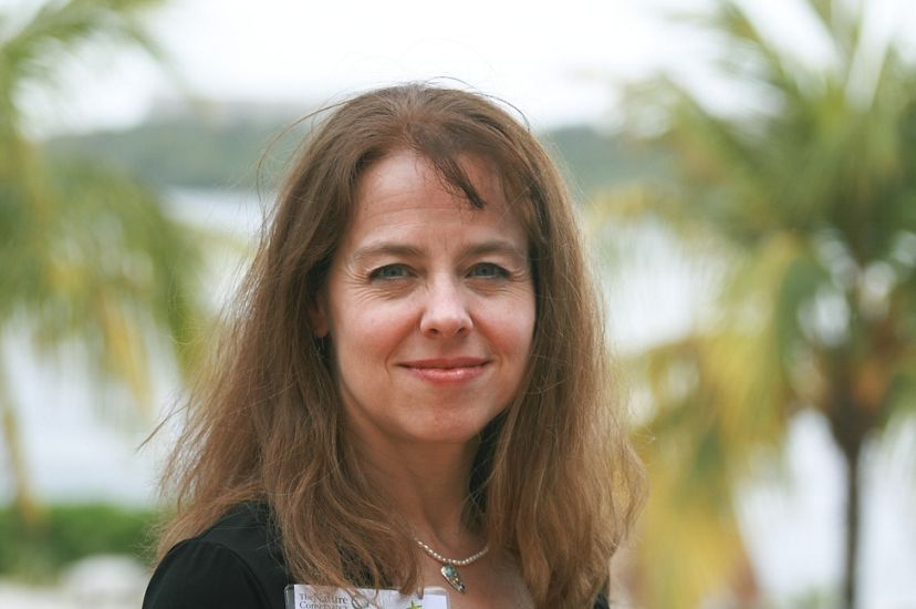 Close cropped head shot of a brown haired woman. Blurred palm trees are visible in the background.