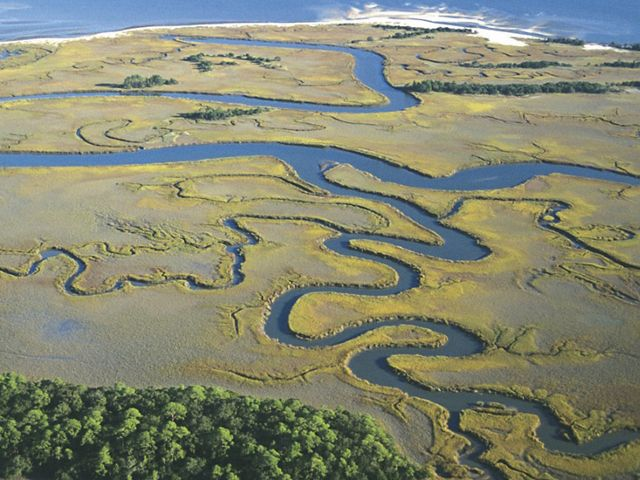 Aerial view of twisting streams on Otter Island. This is an example of a coastal wetland area, which supports a large about of fish species and helps shelter coastal communities from storms- South Carolina has the largest amount of salt marsh area in the East Coast.