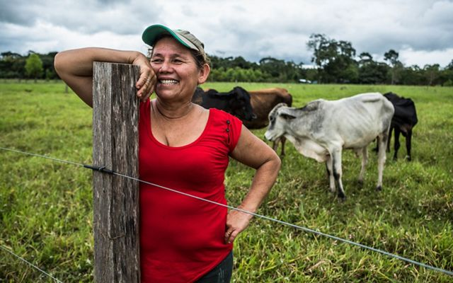 a woman in a baseball cap and red shirt is smiling and leaning against a fence. her cows are standing behind her.