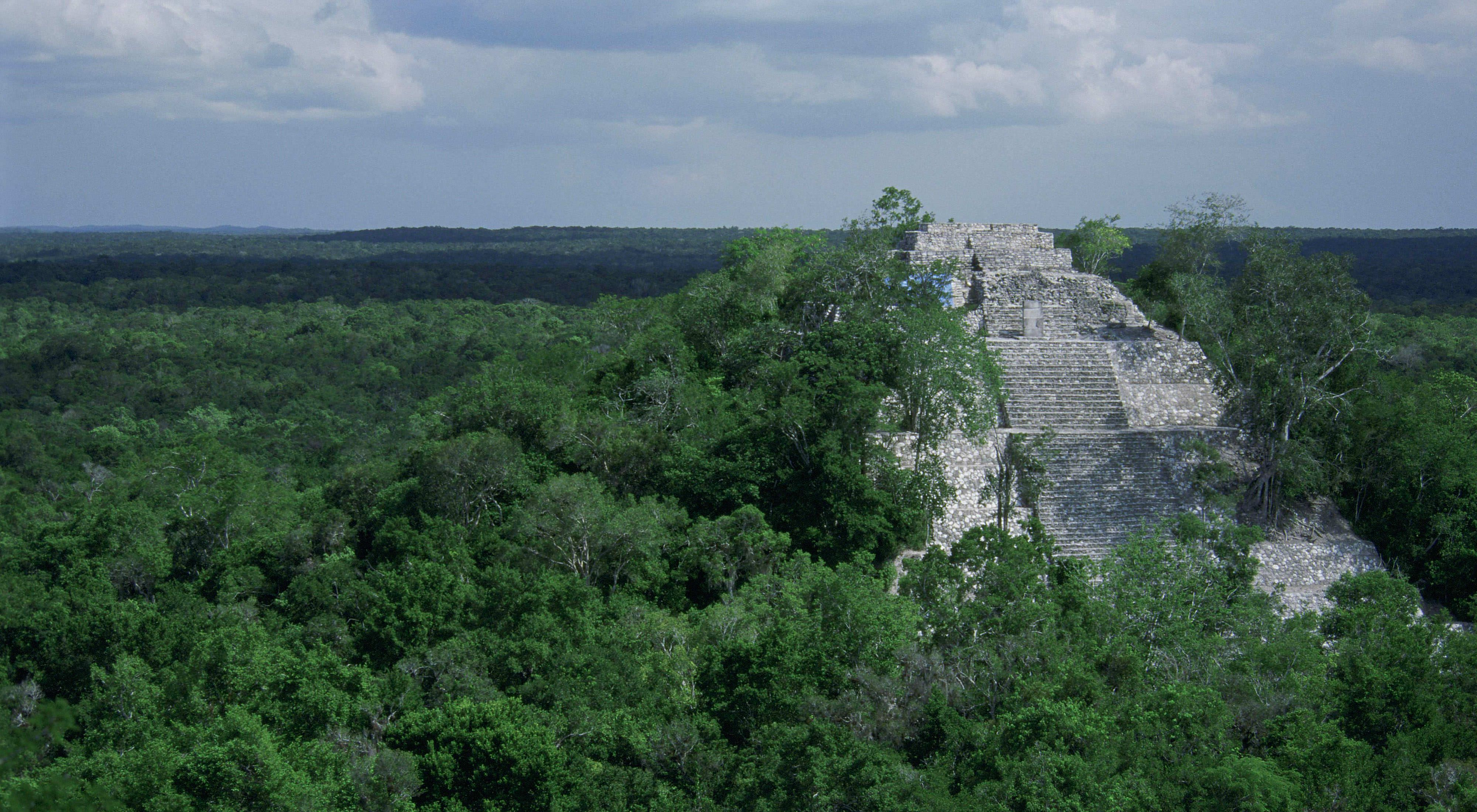 Partially restored Maya temple ruins rise above the Maya forest canopy in Mexico's Calakmul Biosphere Reserve