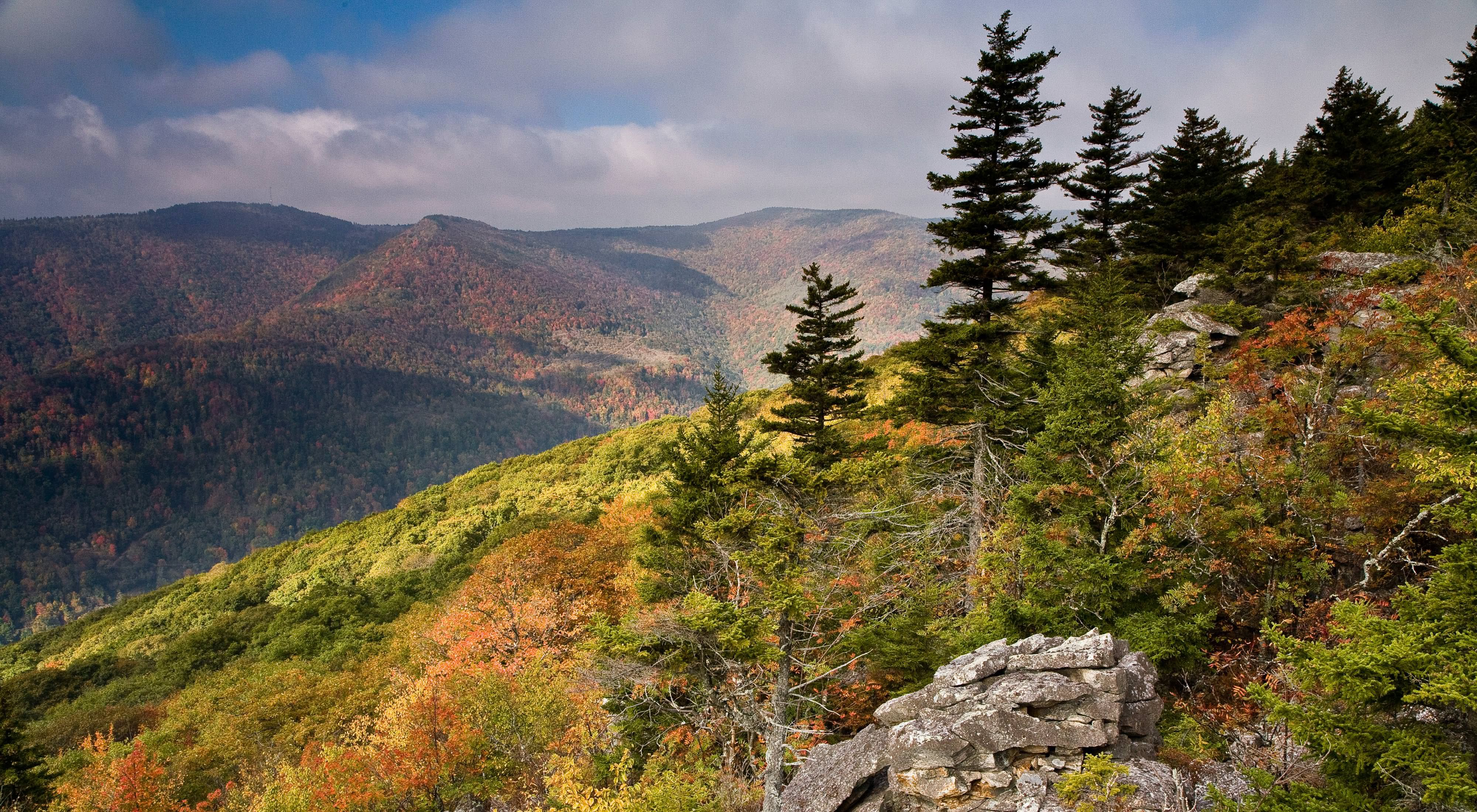 View of Mount Porte Crayon (the sixth-highest point in West Virginia) from the trail at the Roaring Plains West Wilderness in the Monongahela National Forest.