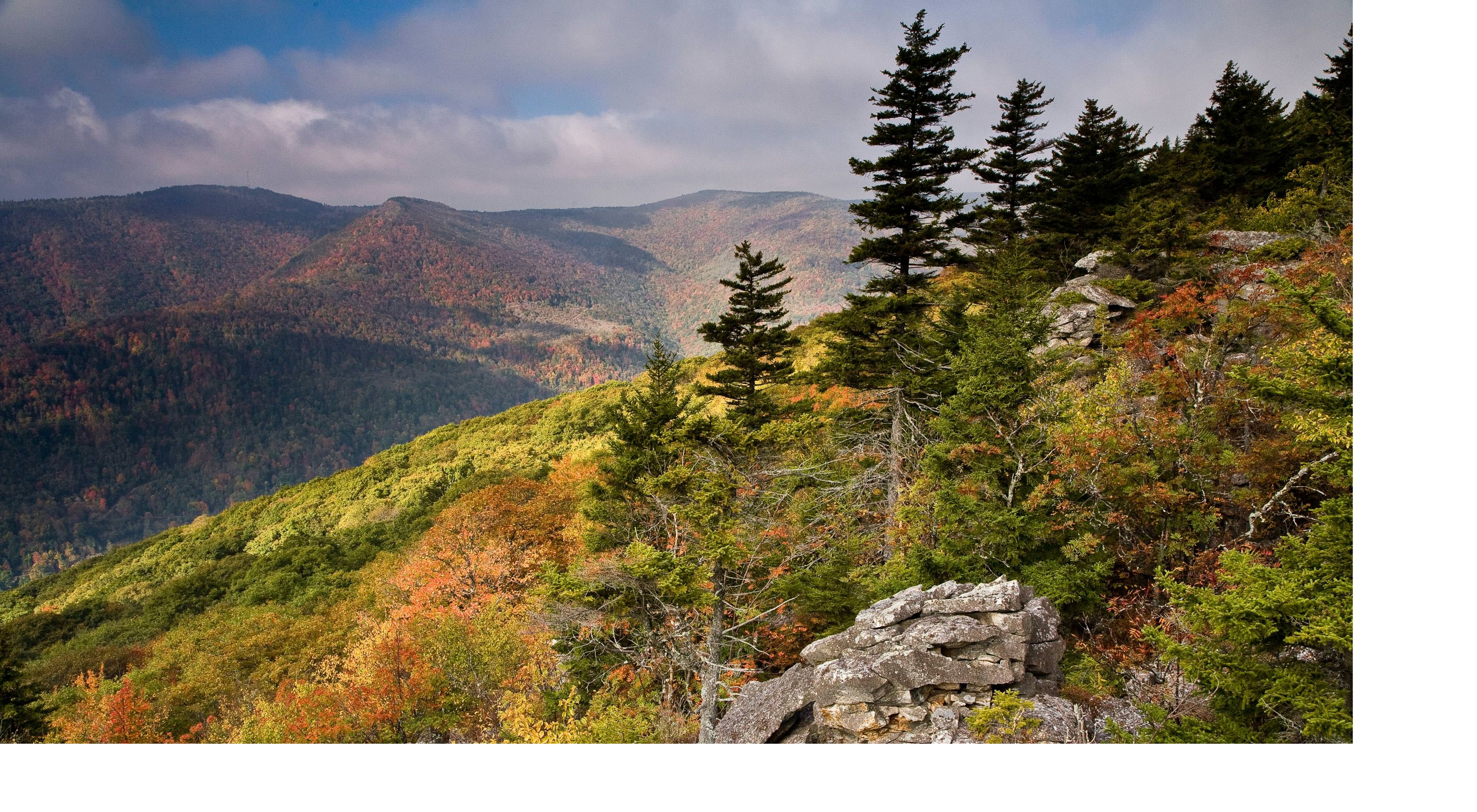 (the sixth-highest point in West Virginia) from the trail at the Roaring Plains West Wilderness in the Monongahela National Forest.