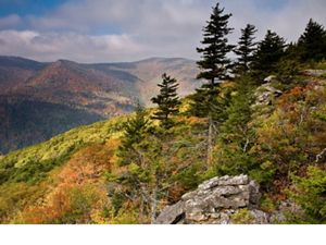 View of Mount Pointe Crayon (the sixth highest point in West Virginia) from the trail at the Roaring Plains West Wilderness in the Monongahela National Forest.