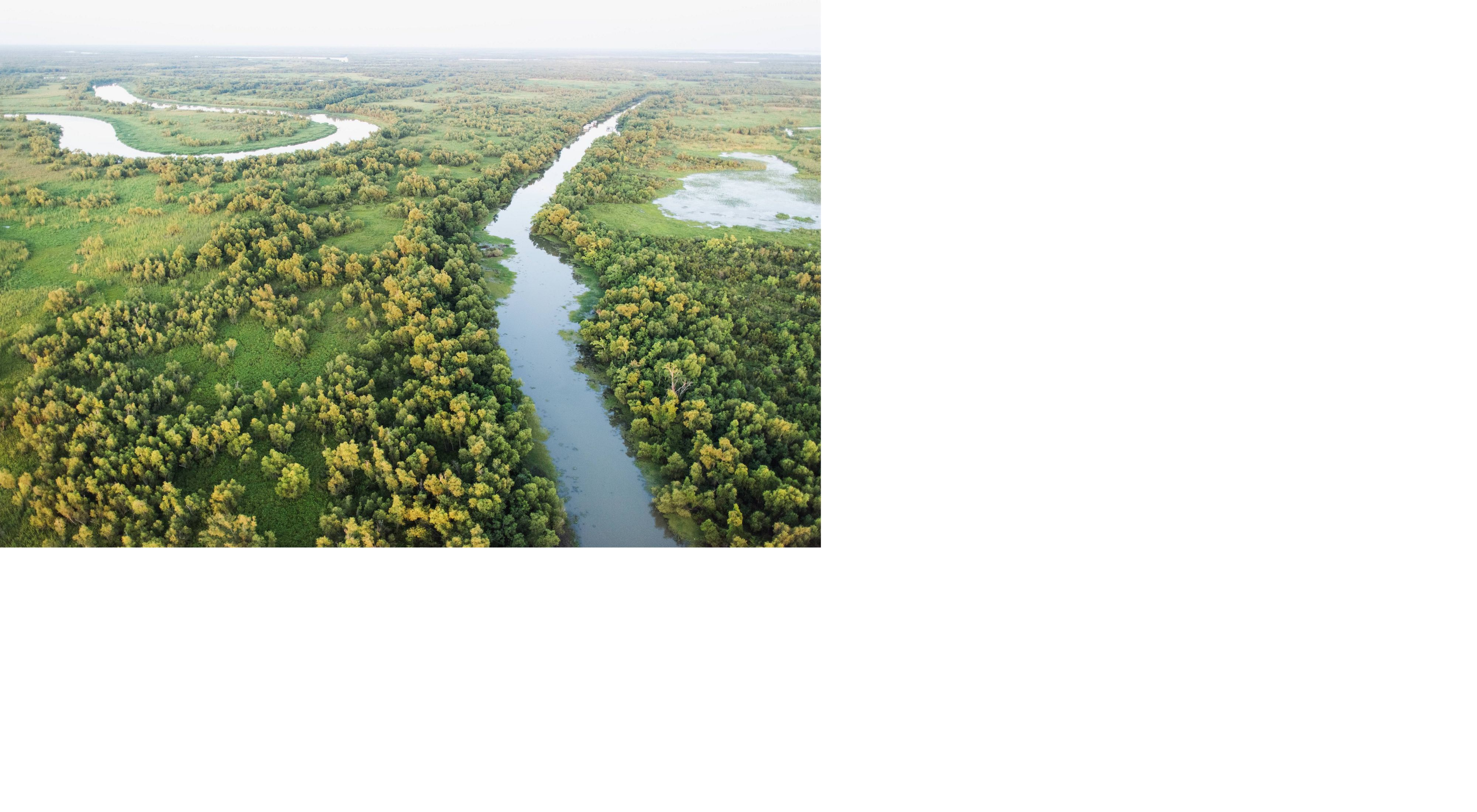 Aerial photo of a marsh and river system near the Wax Lake Delta, Louisiana.