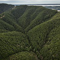 Aerial views of the Ellsworth Creek Preserve, Washington State.