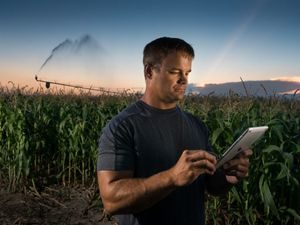 A man holds an iPad in front of his corn field