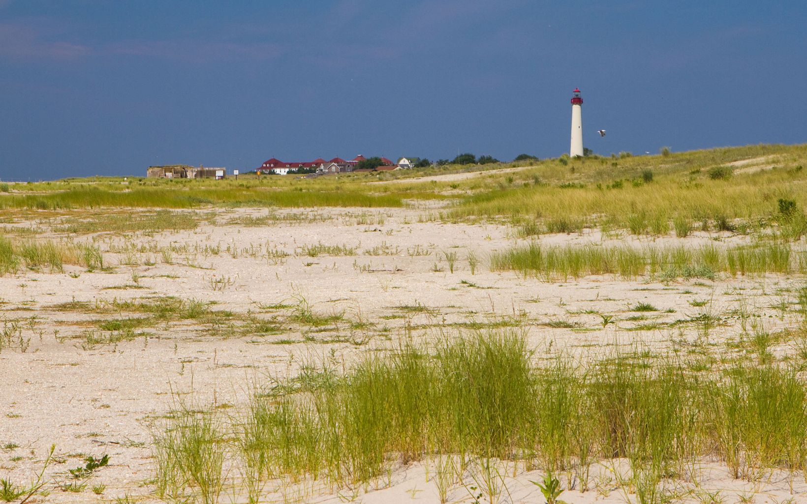 A lighthouse is seen in the background of beach dunes.
