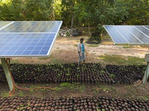 Elizar Samuel Gamara waters the plantings under the solar panels at the Kaxil Kiuic Biocultural Reserve © Erich Schlegel