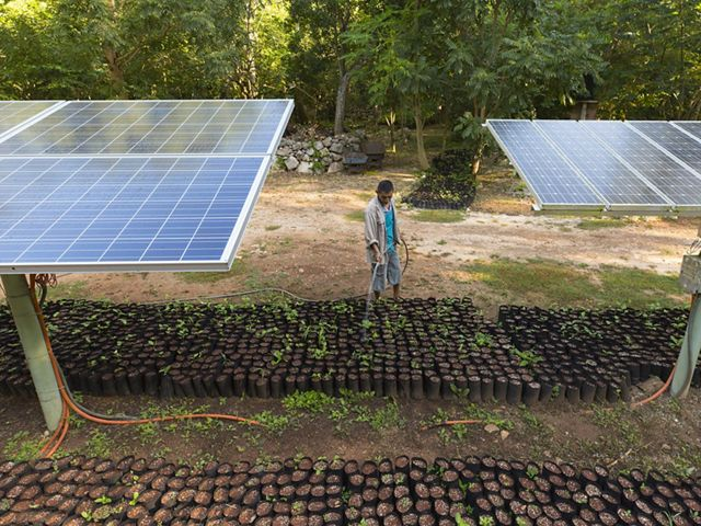 Solar panels at the Kaxil Luic Biocultural Reserve in M