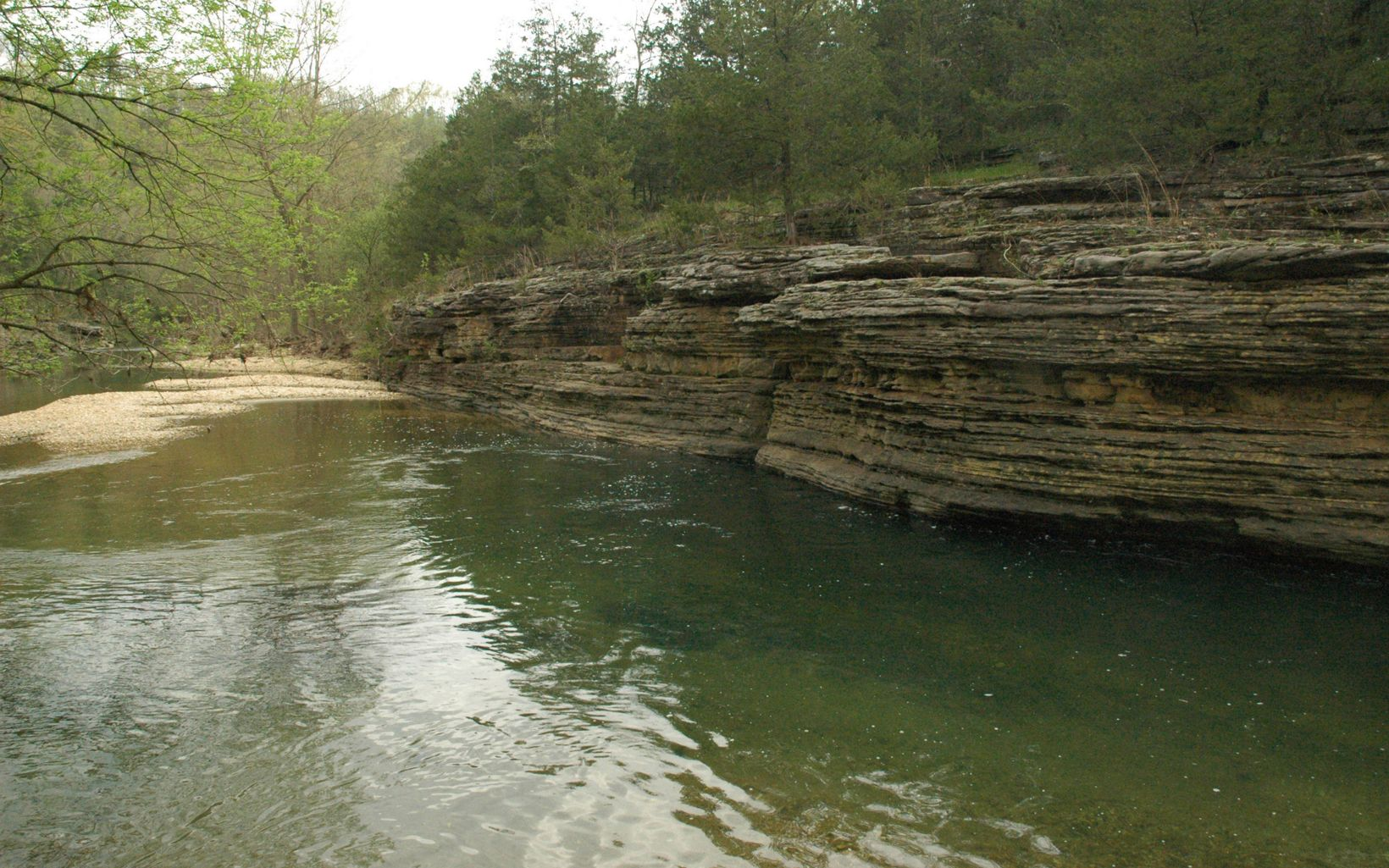 is a focus of the Conservancy's work in the Ozark Highlands in Arkansas.