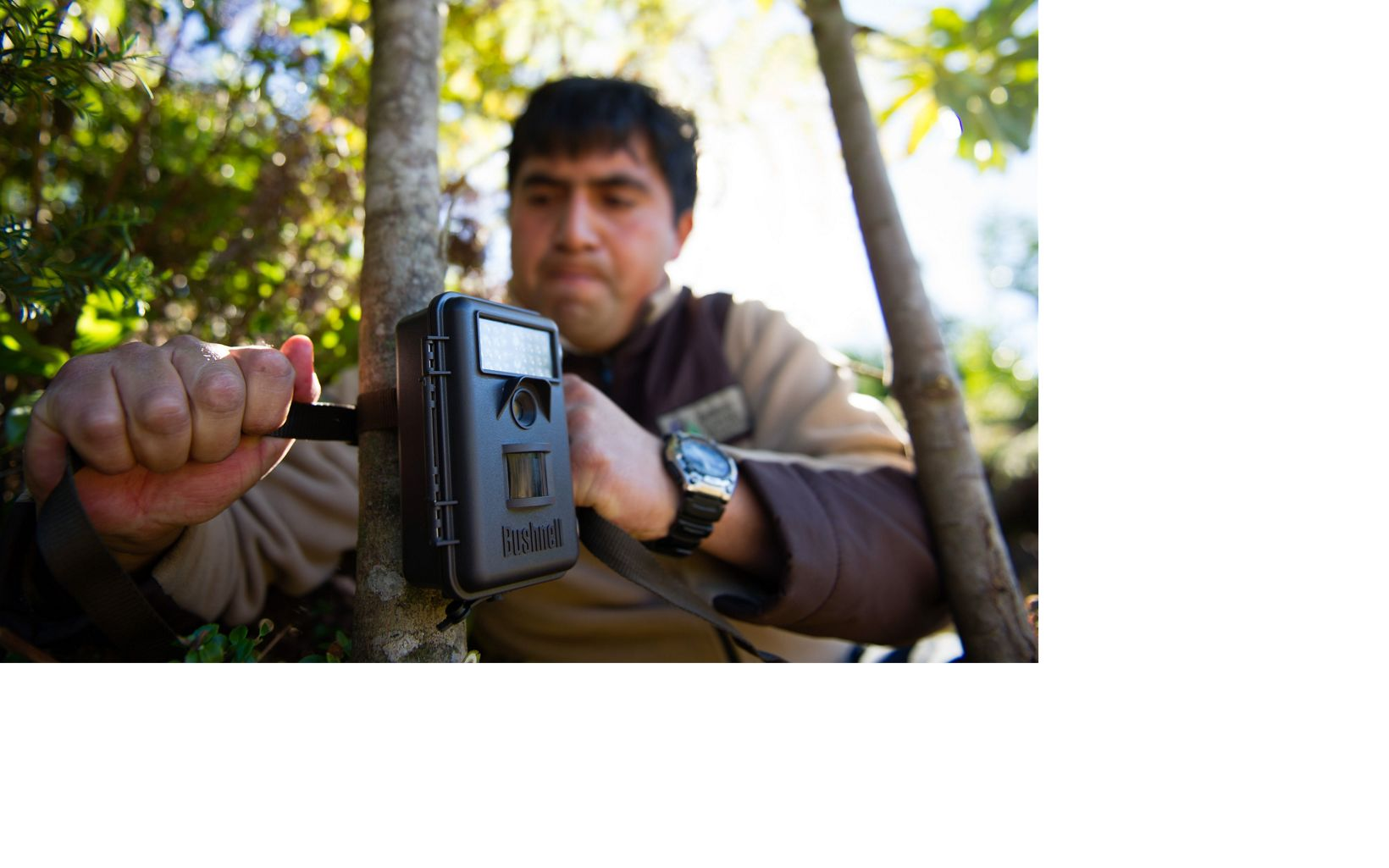 Erwin Ovando, one of the Valdivian Coastal Reserve park guards, positions a remote camera.