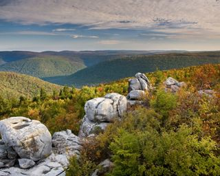 Fall morning view of Dolly Sods Wilderness South from the Boars Nest, Mount Porte Crayon, West Virginia.