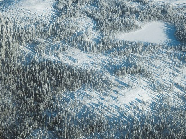 an aerial view of a snow covered forest landscape