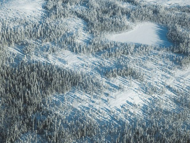 aerial of snowy boreal forest with frozen lakes and tundra in Canada's Northwest Territories