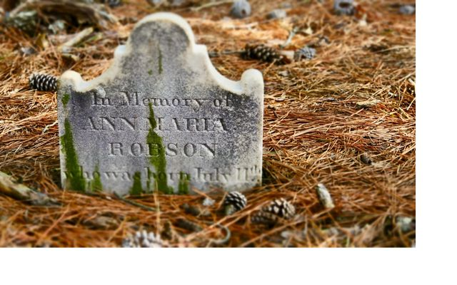 Grave marker in the historic Robson family plot at Maryland's Robinson Neck preserve.