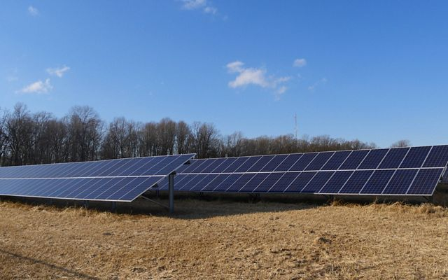 The long rows of solar panels form an array on Maryland's Eastern Shore.