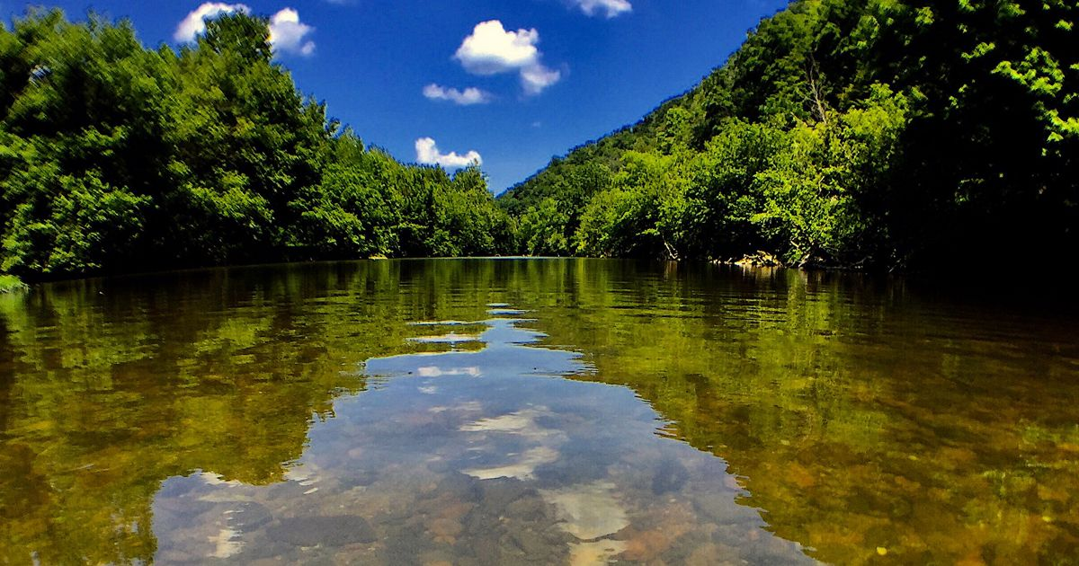 We're working to protect the waters of the Clinch River, monitoring populations of rare freshwater mussels, and encouraging people to enjoy this natural resource.