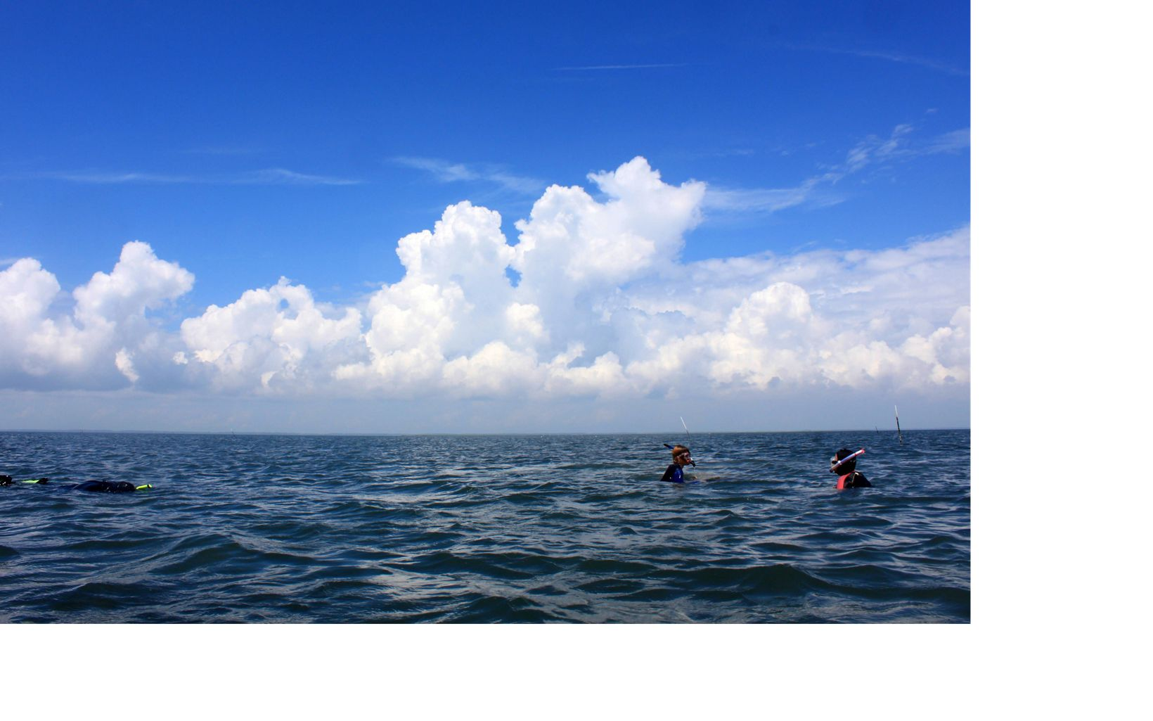 The heads of two people bob above the water while a third person floats and snorkels along the surface.
