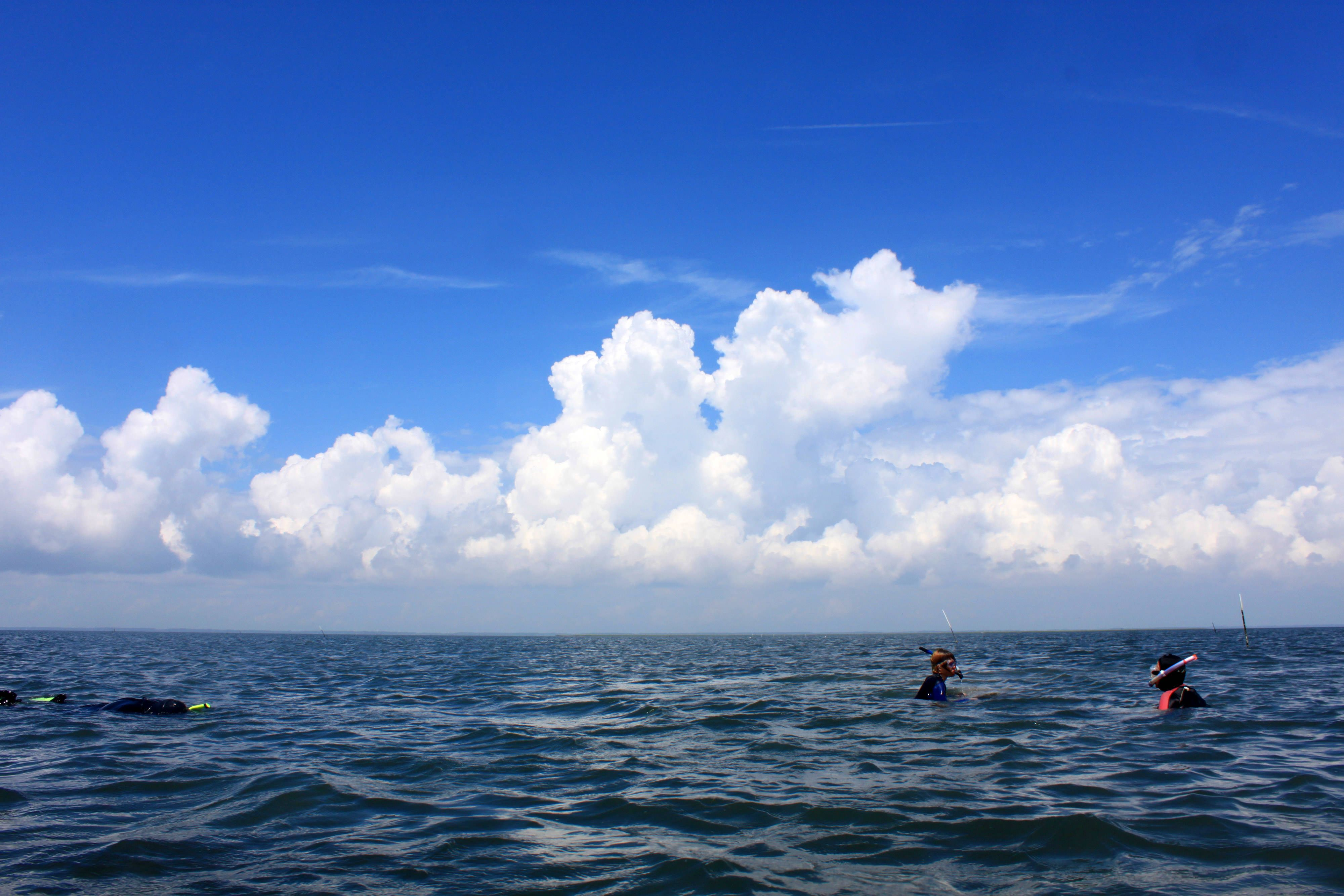 The heads of two people bob above the water while a third person floats and snorkels along the surface of a coastal bay. Large puffy white clouds fill the bright blue sky above.