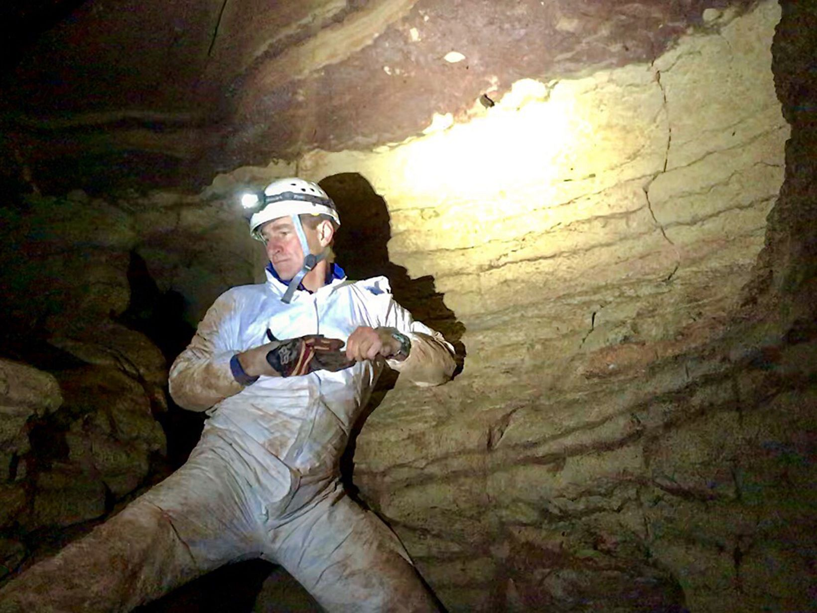 A man in mud covered white coveralls balances against the wall of a cave, preparing to take a sample from the small bat clinging to the wall.