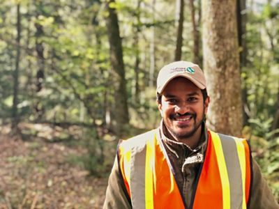Forest Science Project Manager
