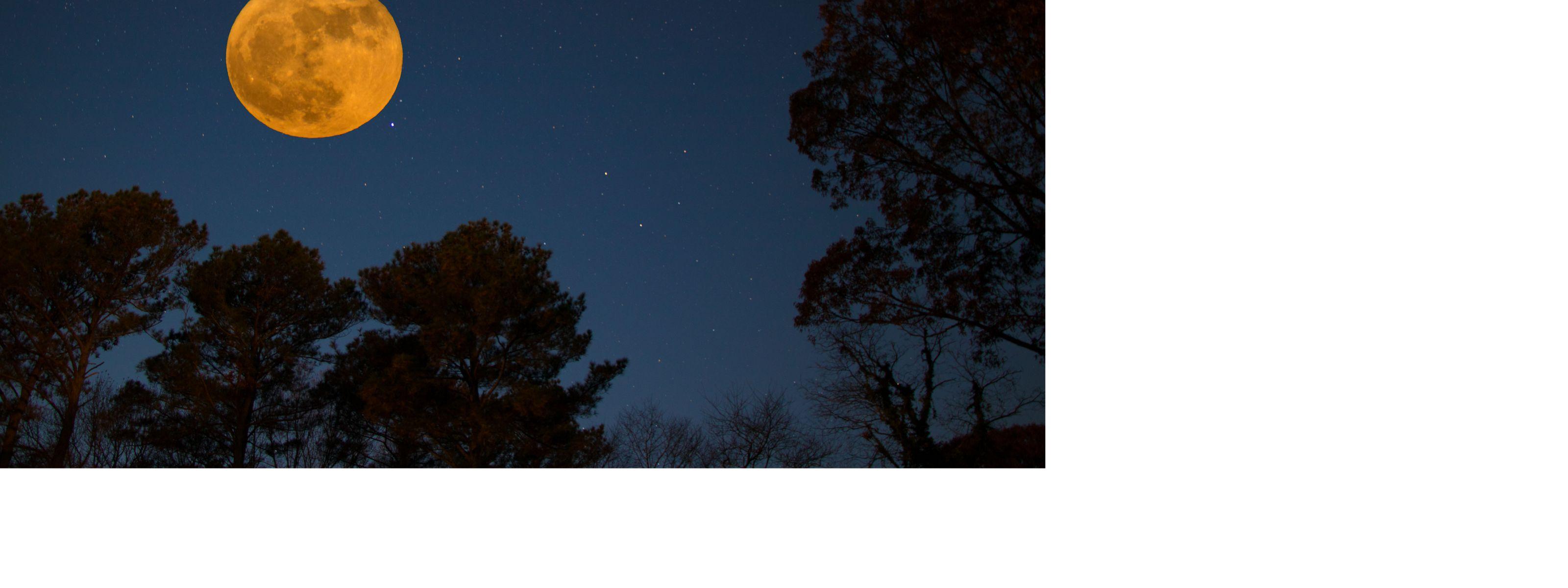 Super moon rises over Virginia's Eastern Shore.