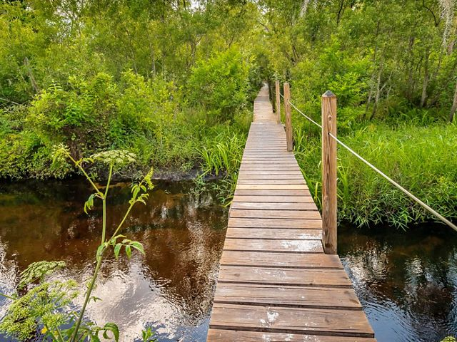 A wooden path allows crosses a blackwater stream at the Tiger Creek Preserve.