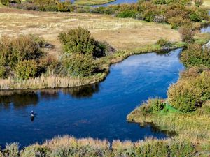 Silver Creek is a world-class trout fishery