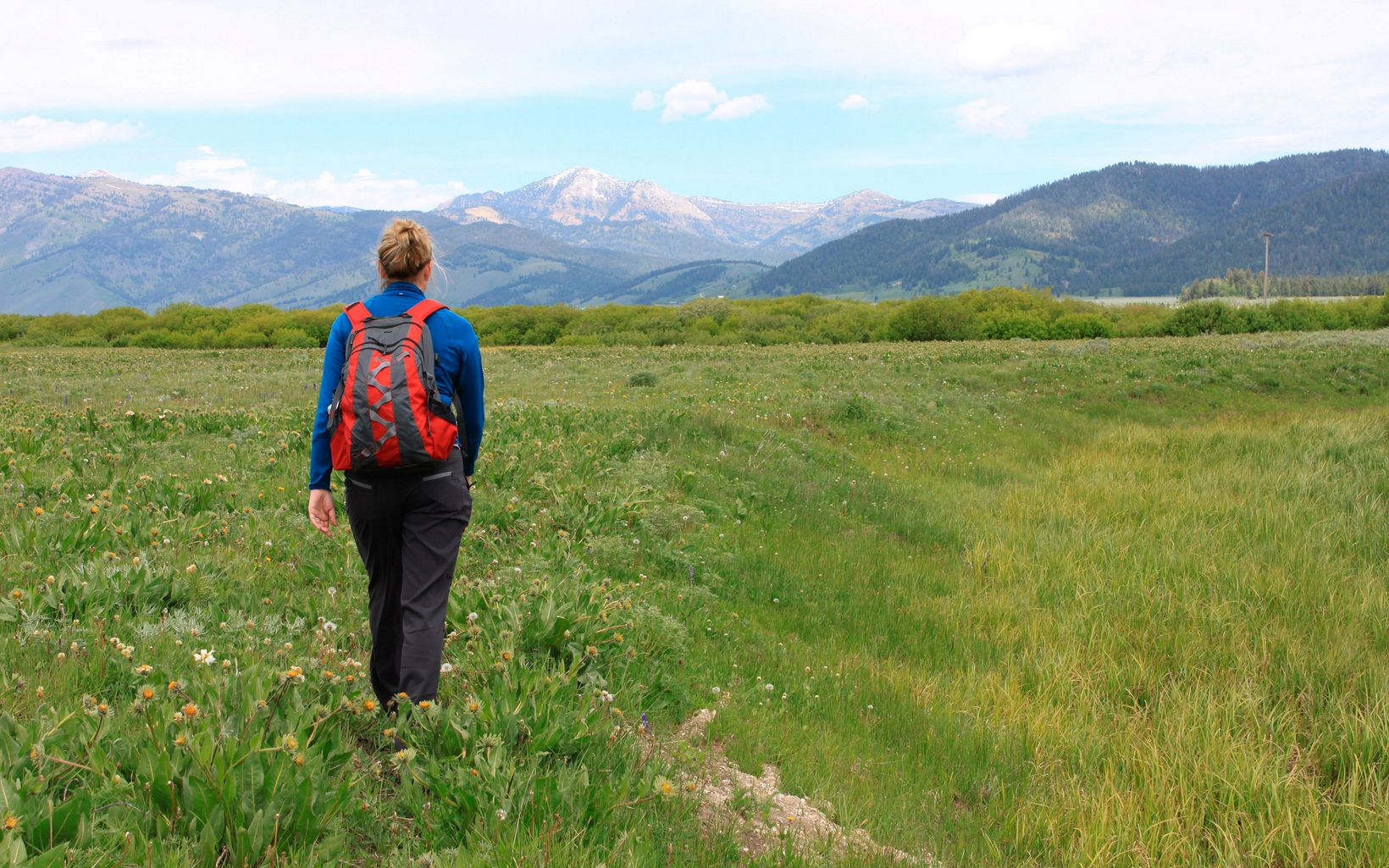A woman with a backpack walking away from the camera through a meadow.