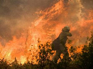 Firefighter walking near large wildfire.