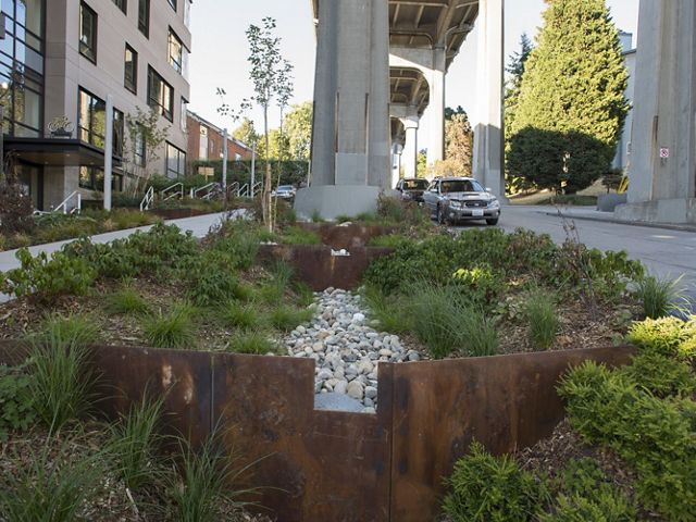 Located in the roadside planting strip next to the Data 1 building and under the Aurora Bridge. Photo
