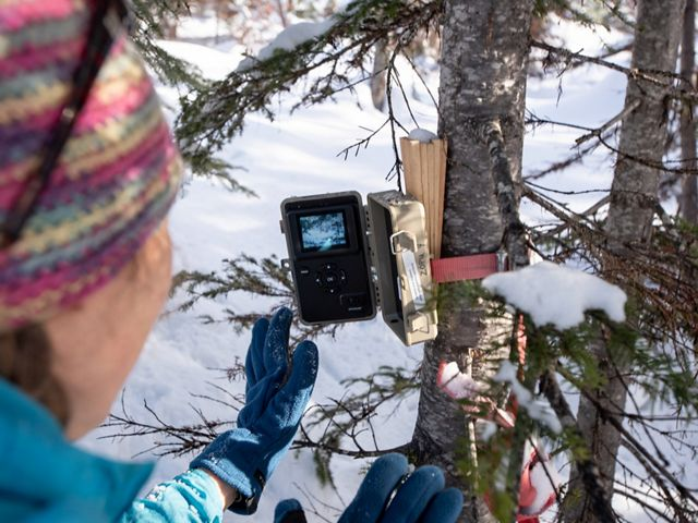 TNC staff visit a Snotel site, check time lapse camera status and measure snowpack.  Emily Howe checks on an outdoor time-lapse camera.