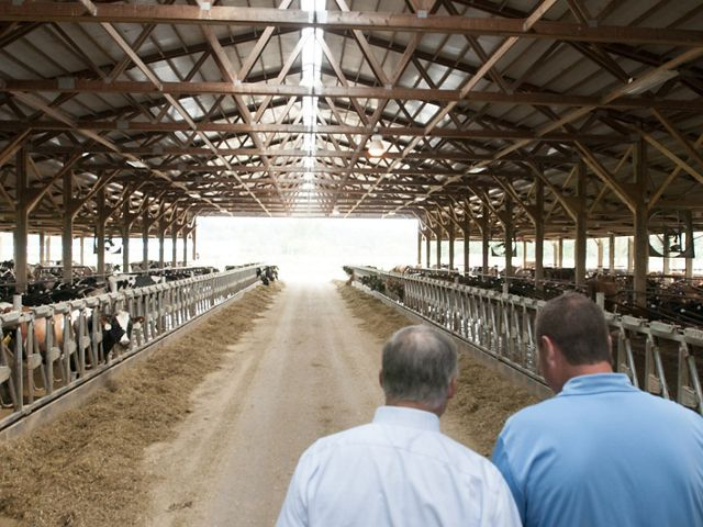 All Internal Rights. Jeremy Visser gives Governor Inslee and others a tour around the dairy farm. Photo by Hannah Letinich.