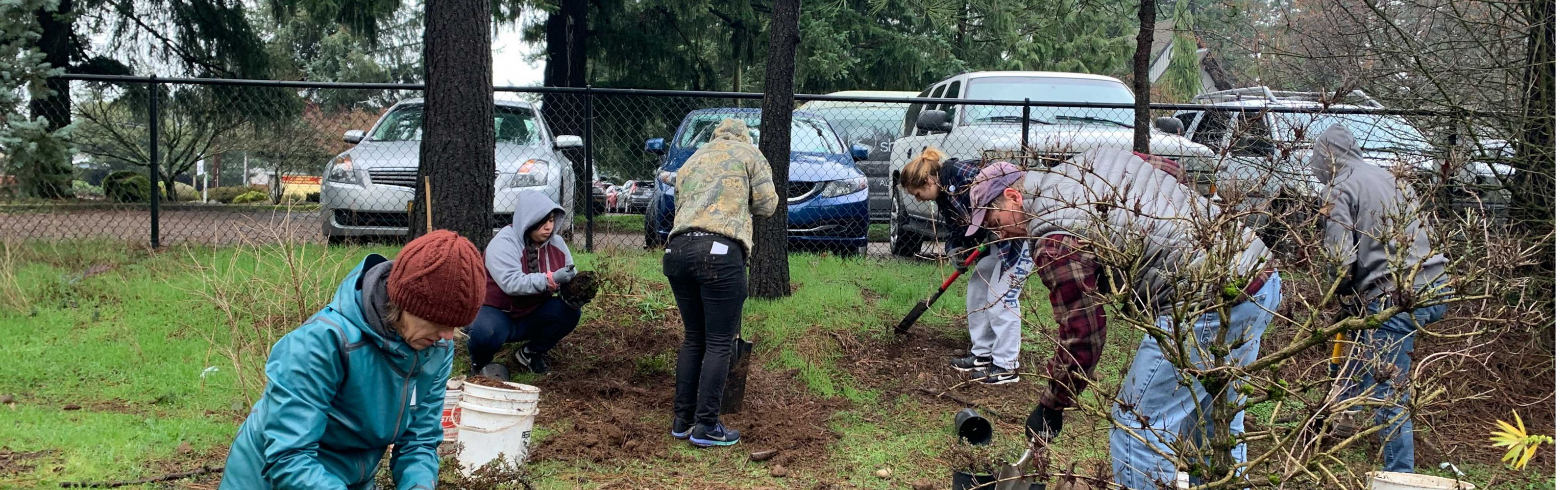 Volunteer planting native trees and shrubs in Portland, OR