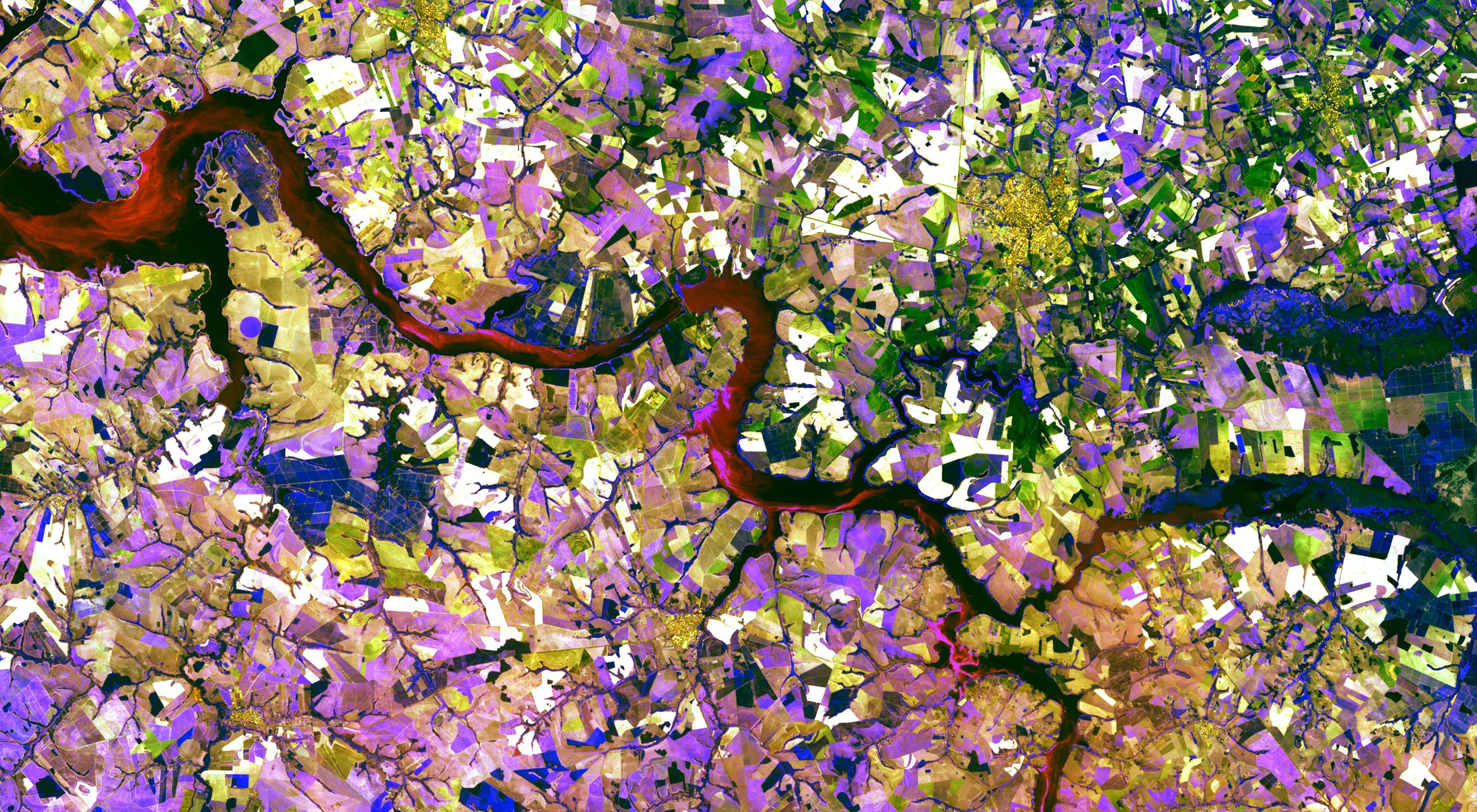 The Tietê River snakes across this tessera mosaic of multicolored shapes near Ibitinga, Brazil. Fields of sugarcane, peanuts, and corn vary in their stages of development.