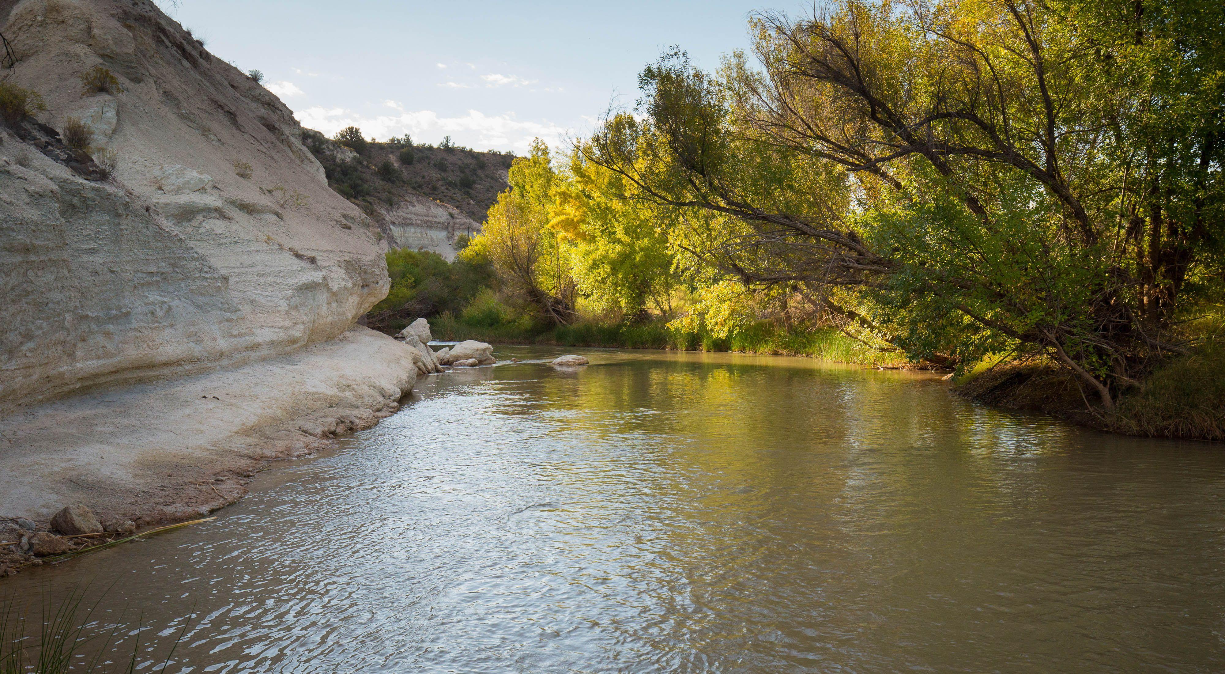 The Verde river near Camp Verde, Arizona.