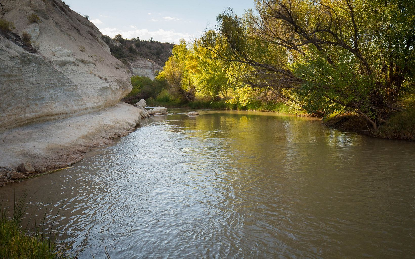 The Verde river near Camp Verde, Arizona.