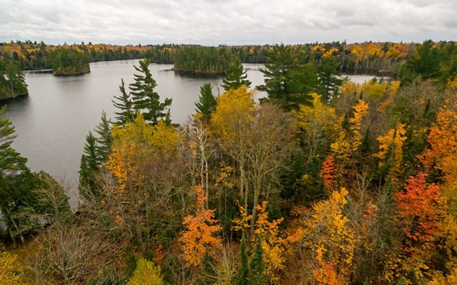 Aerial view of forest around large lake with fall colors.