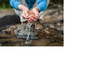 Woman's hands scooping water from a stream