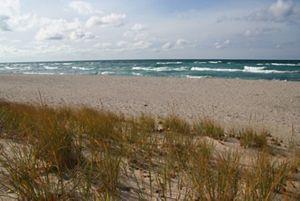 View of the Lake Michigan shoreline at Zetterberg