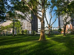 In 2012, this 12-acre park in lower Manhattan was inundated with salt water from Super Storm Sandy's storm surge.  Despite that catastrophe event, 250 of the park's mature trees were able to survive.  The destruction from the storm provided an opportunity to rethink the landscaping, with features that will now function as the city's first line of defense against hurricanes. The Robert Moses era formal paved walkways have been removed, and the walkways that remain are now made of pervious materials.  The removal of unnecessary paths created more room for open lawns, which are planted with native grasses.  Trees can now happily spread their roots, in areas free of synthetic fertilizers and pesticides.  A variety of native trees have been planted in the park, bringing the total number to 530.  This park is important habitat for New York's local and migrating bird populations.