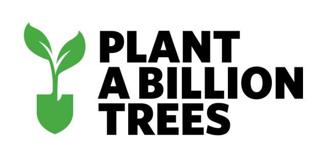 Plant a Billion Trees